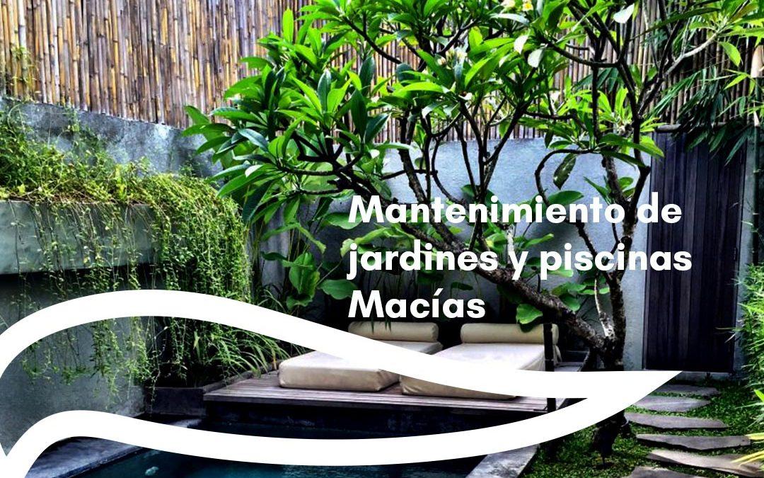 Mantenimiento de jardines y piscinas Macías